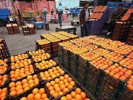 1900 تن سیب و پرتقال برای شب عید کرمانشاهیان خریداری می گردد