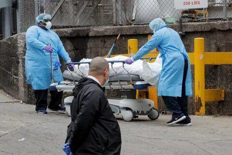 خبرنگاران دانشمندان روس مدعی یافتن راه نابودی ویروس ها در محیط انسان شدند