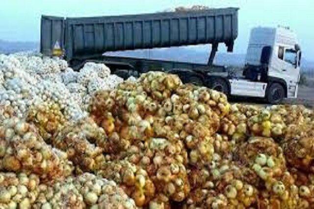 صادرات 300 تن پیاز توسط صادرکننده خراسان شمالی به سه کشور