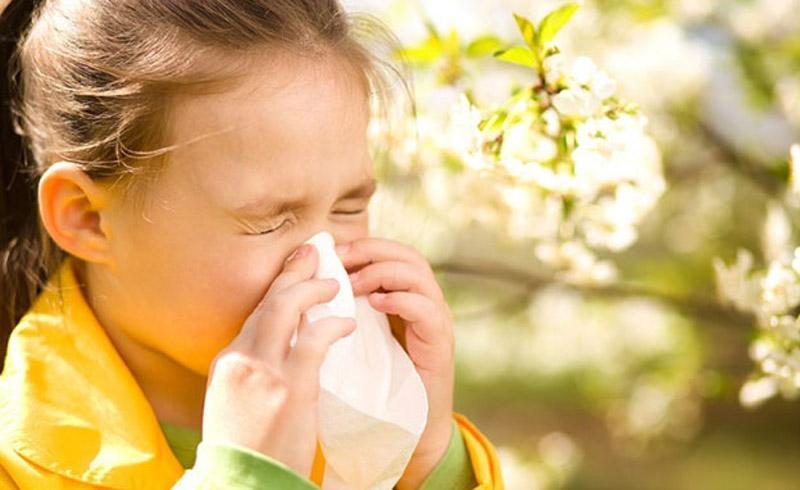 5 داروی طبیعی برای درمان آلرژی