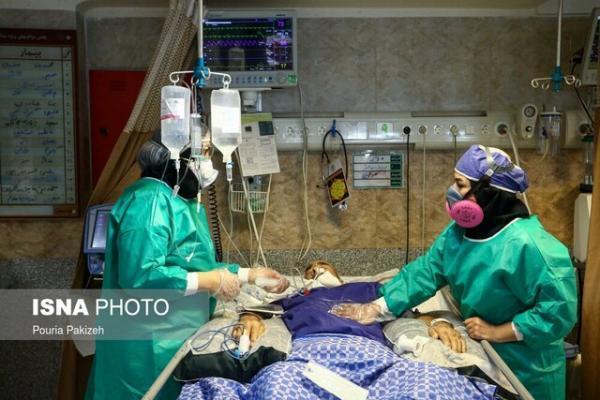 آنالیز شرایط شادگان با حضور گروه واکنش سریع وزارت بهداشت