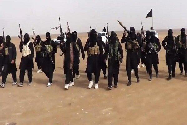 داعش و حزب بعث دو روی یک سکه هستند، توطئه علیه حشد شعبی